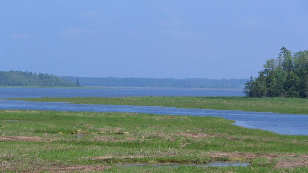 The Shores at Toney Bay
